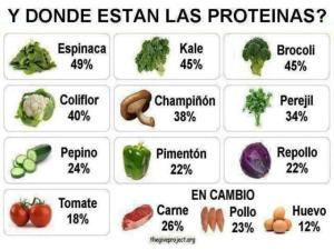 proteinas-vegetales2