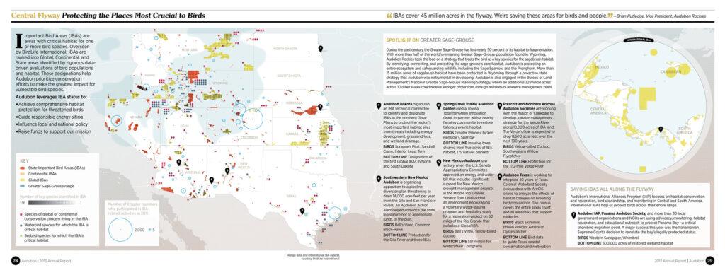 Reporte Audubon 2013: Protegiendo los lugares cruciales para las aves